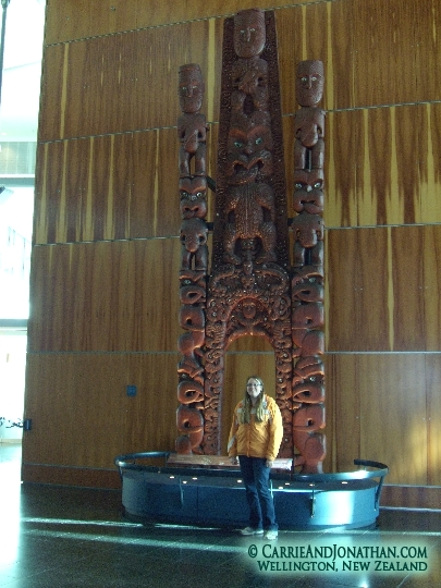 te papa national museum of nature and science in wellington new zealand